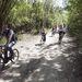 Az egész Szentendrei-sziget kiváló biciklis terep