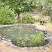 Mielőtt eléri az adott teraszok peremét, helyezze el azokon a növényeket.