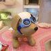 kutyanapszemüveg 7990 Ft-ért. Ön megvenné?
