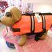 7490 Ft-ért biztonságba tudhatja kutyáját még a tenger közepén is