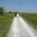 Nordic walkingoló nyugdíjasok hátulról.