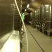 Reduktiv eljárással készül a bor