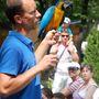 A fókashowban papagájok is szerepelnek
