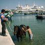 Gozói kikötő, ahol nem ritka látvány a lovak tisztára mosása sem