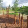 Budakalász (Szentistvántelep), ez is egy viszonylag szerényebb park, de attól még jól használható