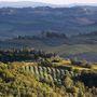 Castellina in Chianti, Toszkána