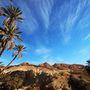 Hegyi oázis a Szaharai-Atlaszban. A hihetetlenül száraz és kopár hegység kis szurdokaiban csörgedező patakok és pálmaligetek csábítgatját az embert