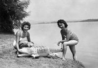 Bocsánat, nem tudunk betelni a gumiállatokkal. (1957, Szentendrei-sziget)