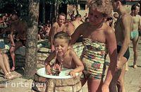 Jelentjük, most is vannak ivókutak, és még most is elég szeszélyesek. (1953, Palatinus)