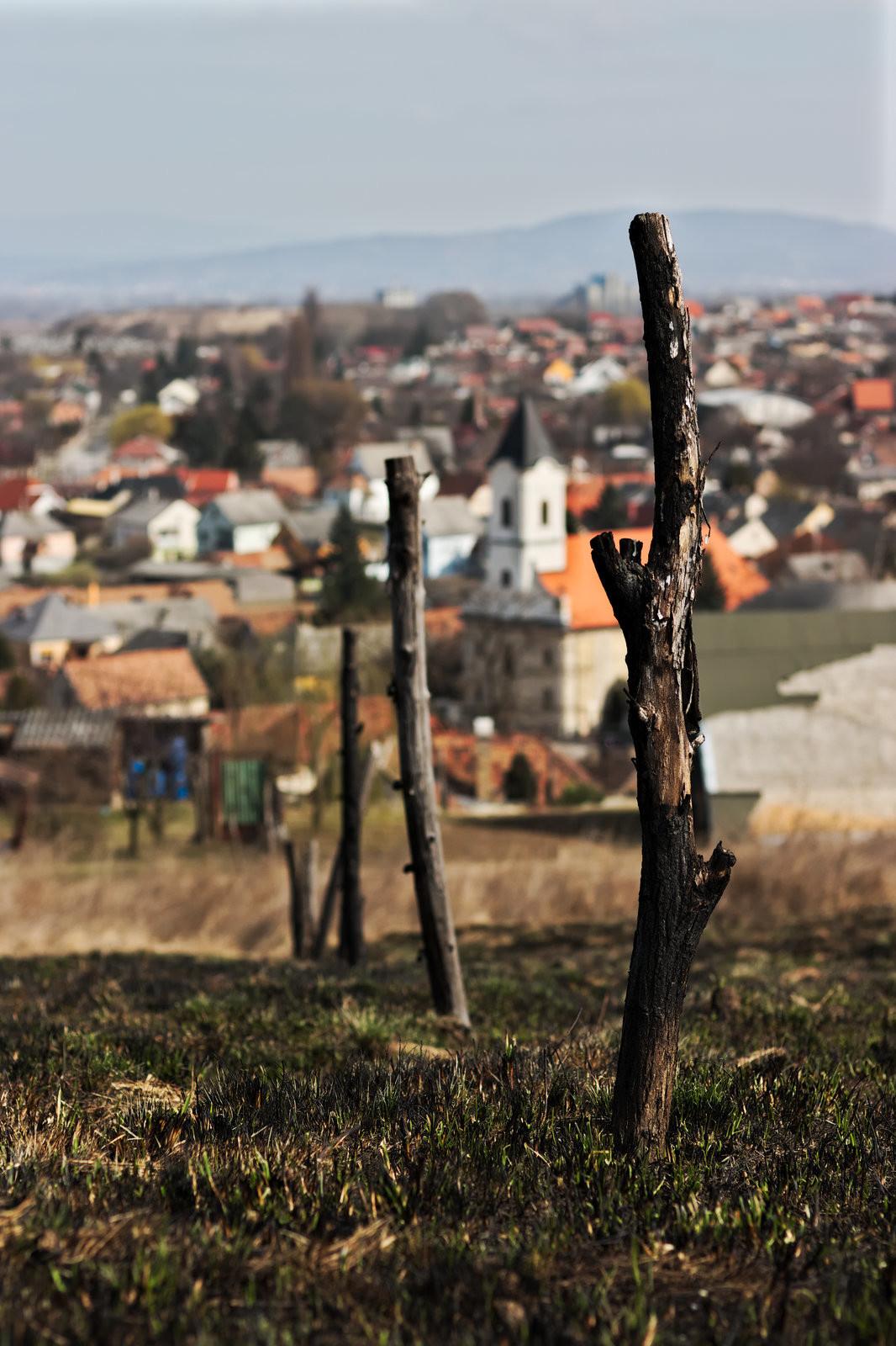 Óház-kilátó, Kőszeg felett. (1. szakasz).