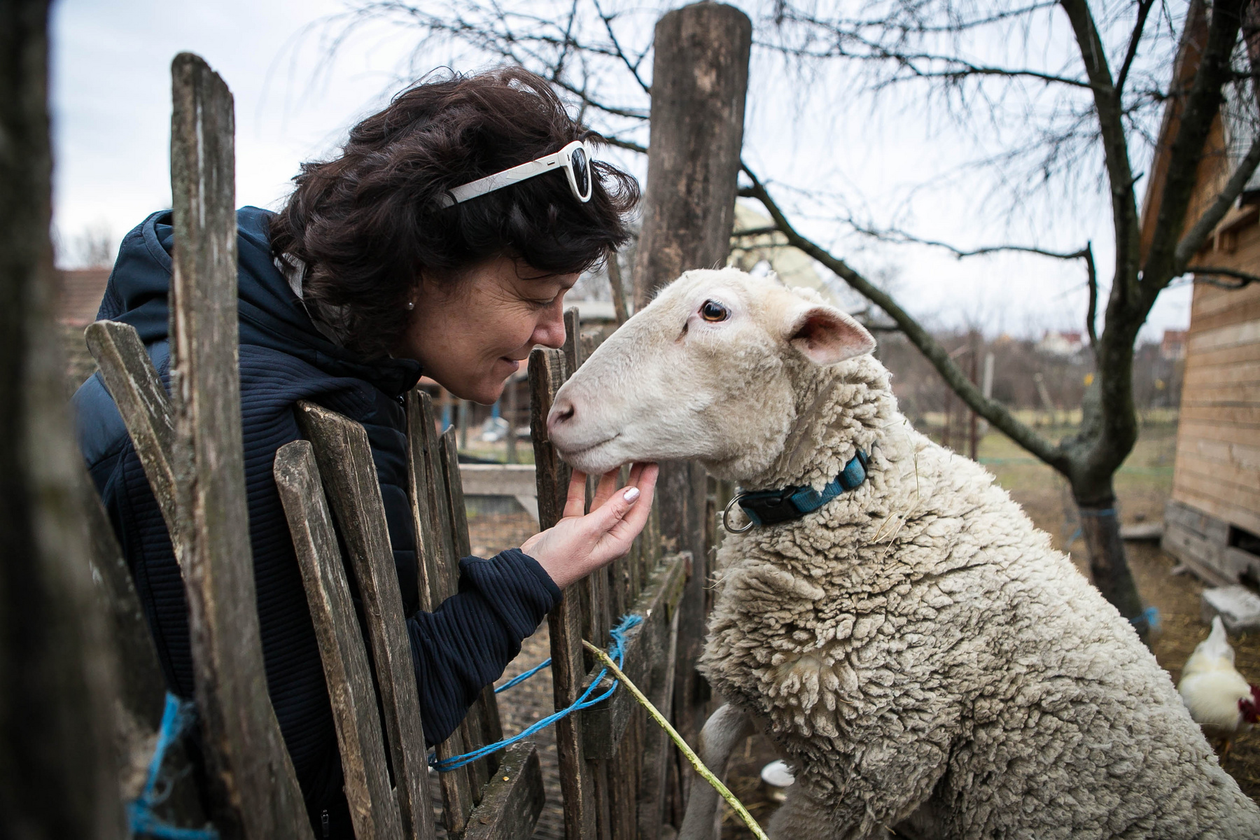Különleges kapcsolat van ember és állat között.