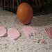 Az egér tojás hozzávalói.