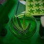 Naná, hogy létezik zöld üvegibrik is