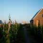 A terasz hajtogatott lemezei pihenésre és kóstolásra biztosítanak teret a festői környezetben.