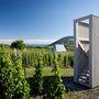 A kunyhók a szőlővidék archaikus építményeinek viselkedését, arányait és anyaghasználatát követik.