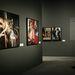 A kiállítás