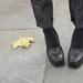 és Ralph Lauren cipője