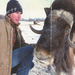 Havas Alaszka és állattenyésztő modell a márka téli kampányában.