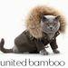 A 2011-es naptárban már bemutatta kicsinyített másukat egy orosz kék macska.