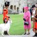 II. Erzsébet brit királynő két napos walesi kirándulása során a caernarfoni kastélyban meglátogatott egy William Windsor nevű kecskét 2010-ben. II. Erzsébetet gyakran látni egyszínű szettben: így biztos nem ütnek el egymástól a ruhák, úgyhogy bátran lehet a színekkel bánni.