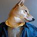 Néha egy farmerkabát is belefér. Vajon moziba indult a kutyus?