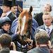 A derbi azért mégiscsak a lovakról szól: az idei derbi győztese, Ruler Of The World, a zsokéval, Ryan Moore-ral és tulajdonosával, Derrick Smith-szel
