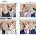 Menswear Dog az internet egy legfelkapottabb sztárja.