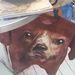 A kutyákat, macskákat, jegesmedvéket, sőt, kardfogú tigriseket pólóra álmodó srácok 2014-ben indítják be az egyedi, saját háziállat portréjával ékesített felsők gyártását.