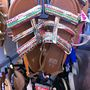F&F: Ez a szandál 3450 forint most, de nyári cipőket már kétezer forint alatt is vásárolhat.